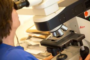 Onderzoek cytologie 10-2020